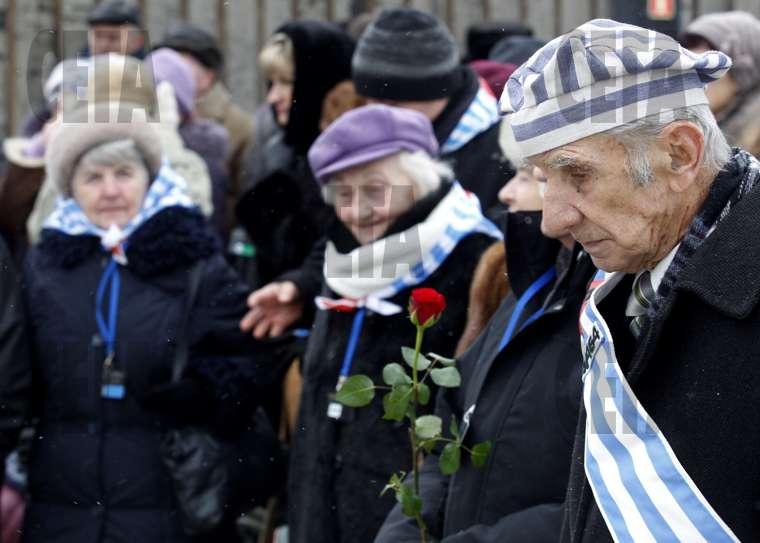 Резултат с изображение за оцелелите от Холокоста.