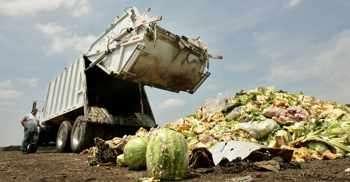 Американците изхвърлят 150 000 тона храна на ден