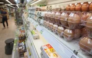 Германия изтегля заразени с фипронил яйца от Холандия