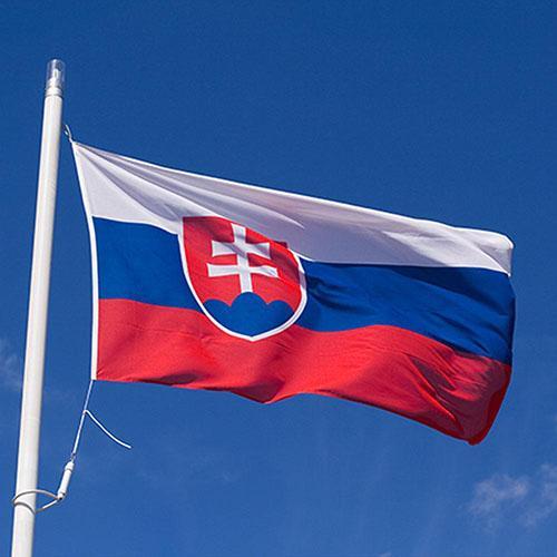 Снимка БНРДесетки хиляди граждани на Словакия протестираха с искане за